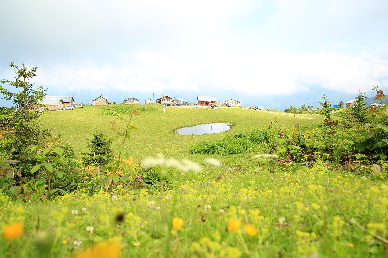 Huzur, temiz hava, yeşillik bir arada! Karadeniz'in yeni gözdesi