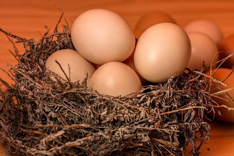 Yumurta alerjisi olanlar grip aşısına dikkat
