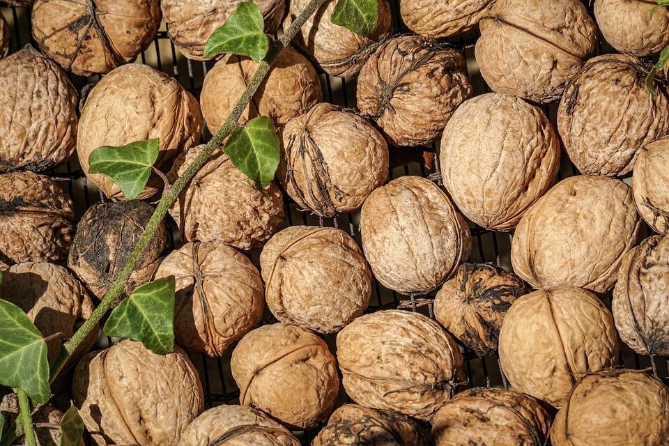 Is nutmeg a tree nut stake pocket ratchet straps