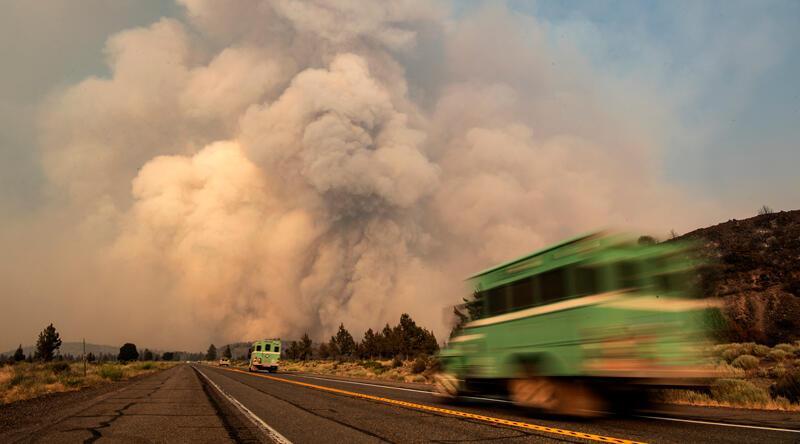 ABD'nin batısı, yüksek sıcaklık ve yangınla aynı anda mücadele ediyor