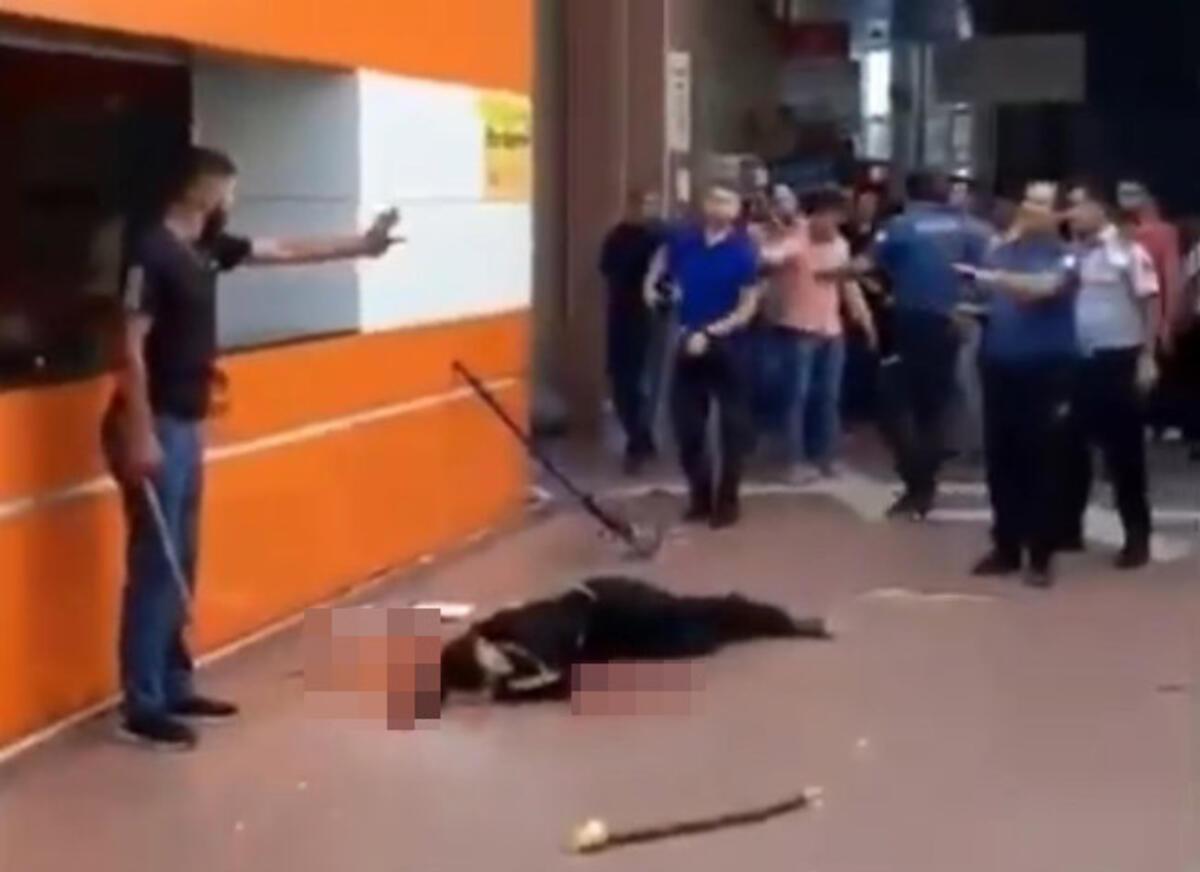 Batman Şehirlerarası Otobüs Terminali'nde bir kişinin öldürüldüğü olaya müdahalede ihmalleri bulunan polisler açığa alındı. ile ilgili görsel sonucu