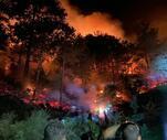 Son Dakika: Karacasu'daki yangın, büyük oranda kontrol altına alındı