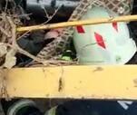 Son Dakika: Kabak hasat makinesine sıkışan kadın ağır yaralandı
