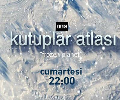 "Kutuplar Atlası ""Frozen Planet"", CNN TÜRK'te"