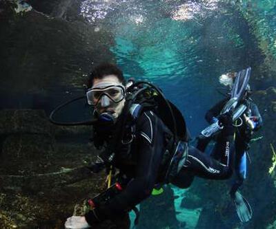 Köpekbalıklarıyla dansın ilk dalgıcı Deniz Akkaya oldu