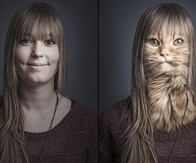 Kediler ve sahipleri