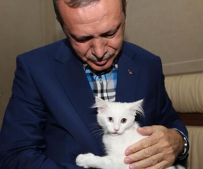 Başbakan Erdoğan'ı hiç böyle görmediniz