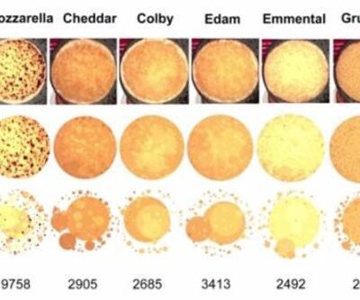 Pizzaya en çok yakışan peynir bilimsel olarak kanıtlandı