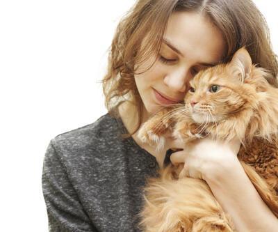 Kediniz sizi sevdiğini nasıl gösterir?