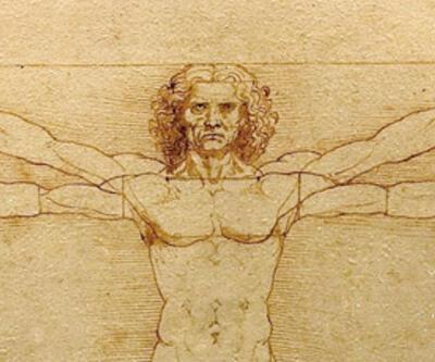 İnsanda bulunan 10 körelmiş organ