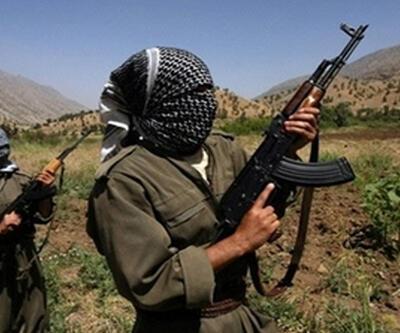 Hakkari'de operasyon: 2 PKK'lı öldürüldü