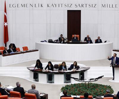 """Meclis bütçe görüşmelerinde """"soytarı"""" tartışması"""