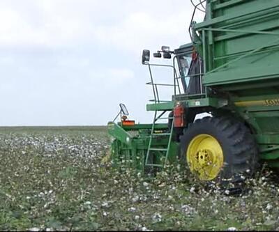 Tarım arazileri her yıl giderek eriyor