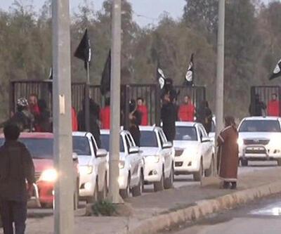IŞİD esir tuttuğu Peşmergeleri kafeste sokak sokak gezirdi