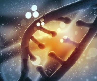 Tüm ulusun genetik kodunu çıkardılar!
