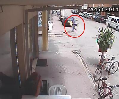Kedi köpeğe saldırdı, köpeğin sahibi korku dolu anlar yaşattı!