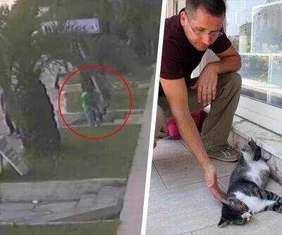 """Kedisine eziyet edenleri şikayet etti, polisten """"Burası Türkiye"""" yanıtını aldı"""