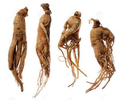 Cinsel gücü artıran 17 bitki