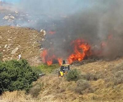 Avşa adasında büyük yangın