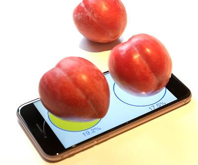 iPhone 6s tartı olarak kullanıldı
