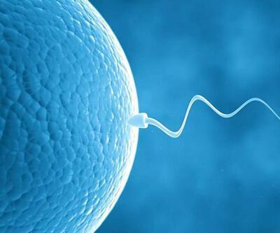 Tüp bebek tedavisi öncesi nelere dikkat edilmeli?