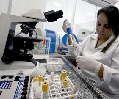 Kuzey Amerika'da Zika virüsü alarmı