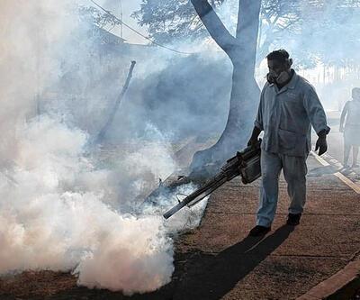 Zika virüsü Venezuela'da 3 can aldı