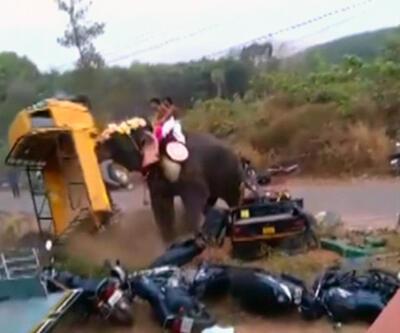 Fil kamyoneti paramparça etti