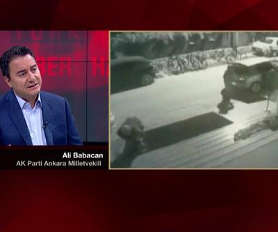 Ali Babacan: Devleti riske atamayız