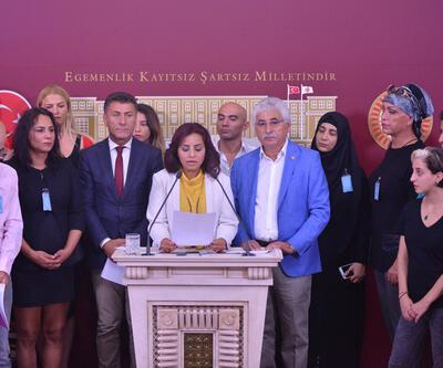 CHP'li Altıok, LGBTİ'lilerle Meclis'te basın toplantısı düzenledi