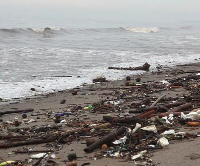 Marmara Denizi temizleniyor: 10 yıl sonra yüzülebilecek
