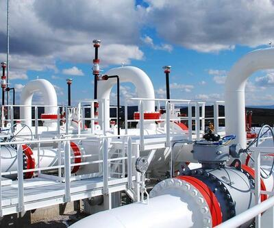 BOTAŞ özel sektörün gazını yarıya indirecek