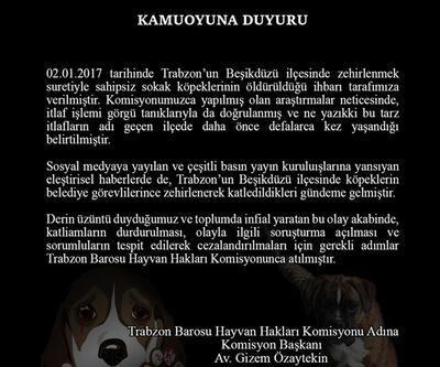 Beşikdüzü'nde köpek katliamı iddiası