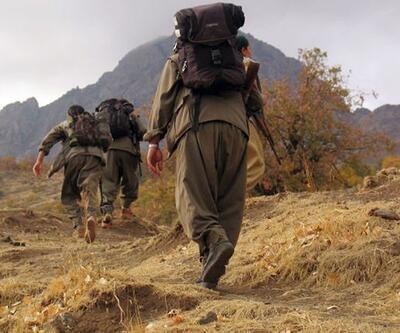 Dağ kadrosundan 3 PKK'lı yakalandı