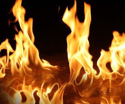 Adıyaman'da yangın: 5 bin dönüm alan zarar gördü