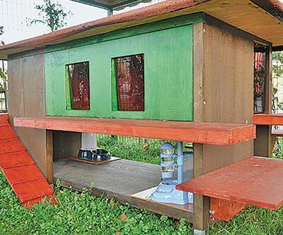Kedilere ısıtmalı köşk, kuşlara özel tasarım kafes