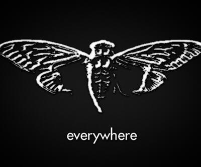 Karanlık internette ortaya çıkan gizemli örgüt: Cicada 3301
