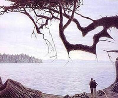 Resimdeki bebeği bulabilir misiniz?