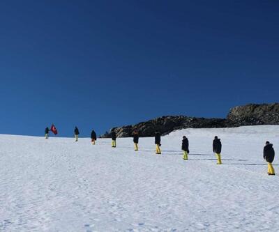 Antarktika'da 280 milyon yıllık ağaç fosilleri bulundu