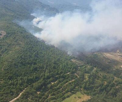 Aydın'da makilik yangını