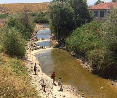 Sakarya Nehri kurudu