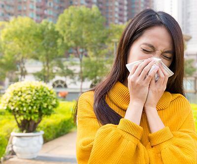 Aşırı nem alerjik hastalıkları artırdı