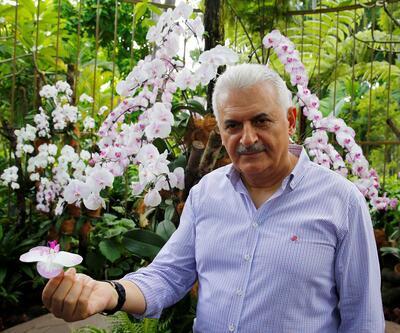 Başbakan Yıldırım'a Singapur'da sürpriz: Adını orkideye verdiler