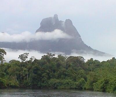 Brezilya'da facia: Amazonlar maden faaliyetine açıldı