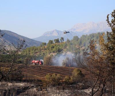 Serik'te orman yangınında yüzlerce arı kovanı ve bir ev kül oldu