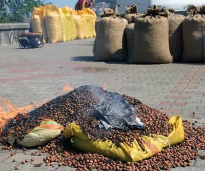 Fındık üreticileri 8 TL'lik fiyata tepkili