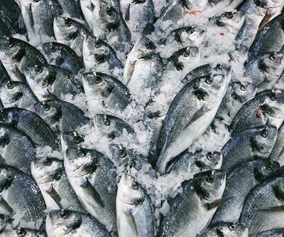 Balığın tazeliğini anlamak için püf noktaları