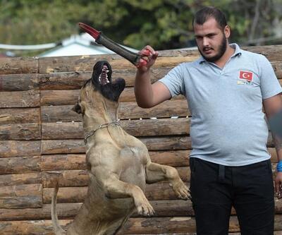 Sayaç okuyanlara köpek saldırısına karşı korunma eğitimi verildi