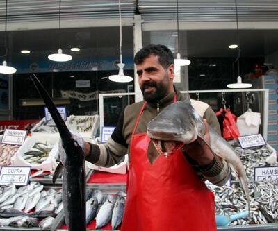 Bingöl'de köpek balığını alan yok, fotoğraf çektiren çok