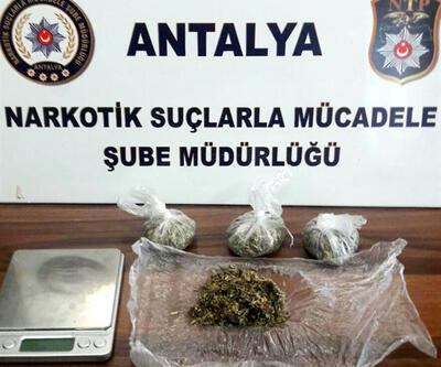 Antalya'da bonzai operasyonu